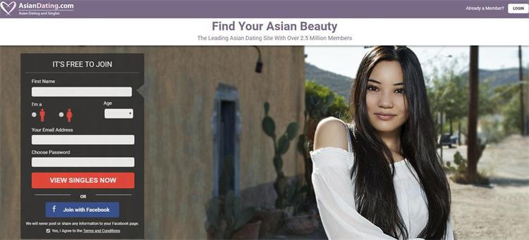 Top 5 interracial dating sites